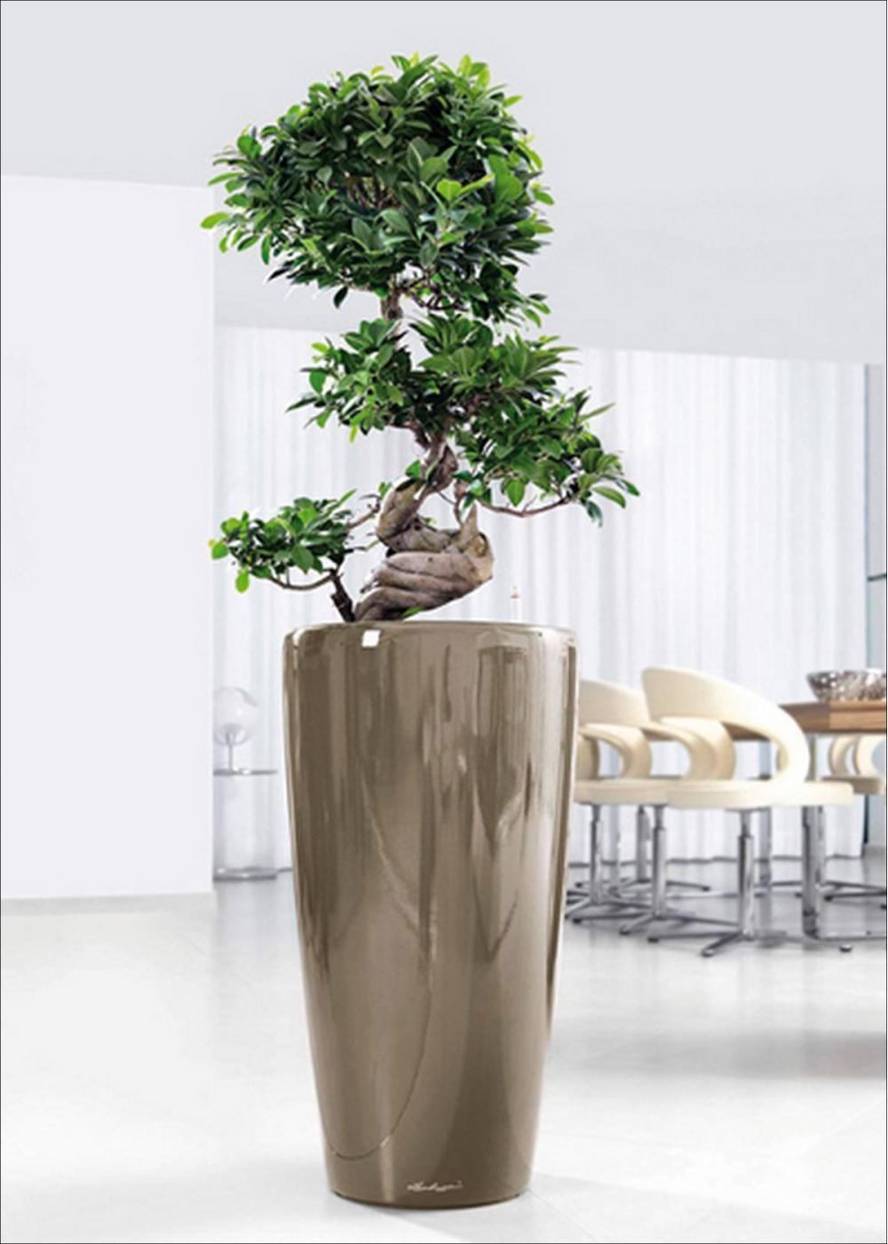 Vaso lucido rondo premium for Vasi vetro design