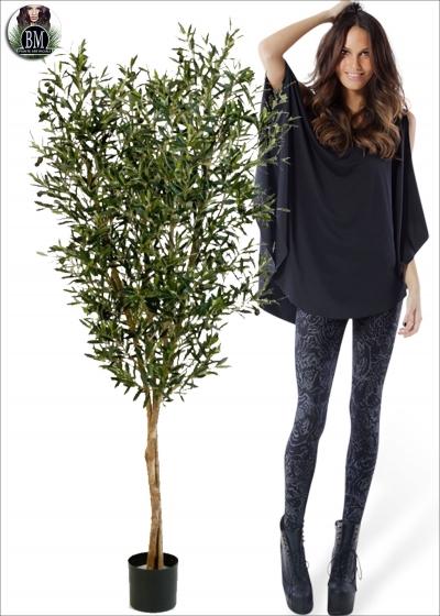 Olive Natural tree con Frutti Tre Misure