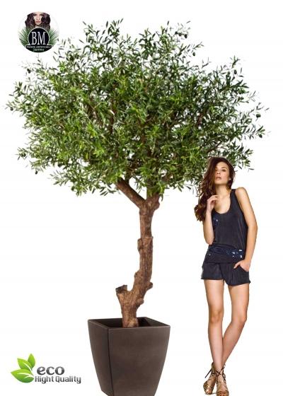 Olive Natural Tree MAXI H. 270cm