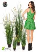 Festuca Foxtail Wild Grass 4 Misure