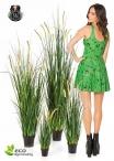 Foxtail Wild Grass 4 Misure