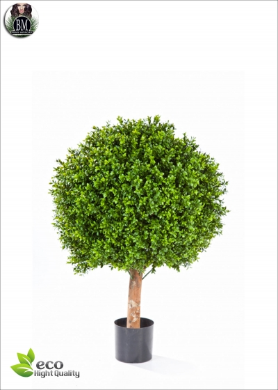 Boxwood Ball Diam. 80cm