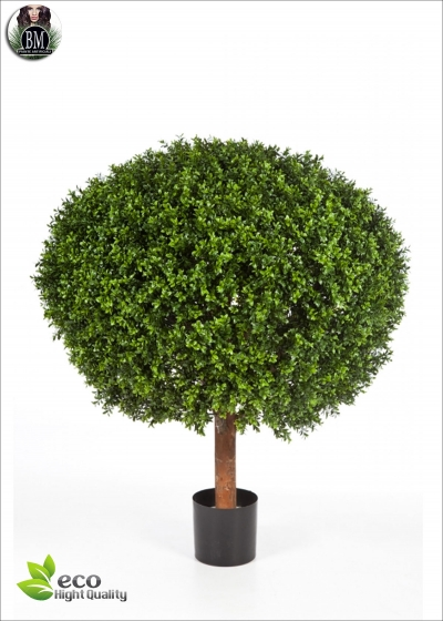 Boxwood Ball Diam. 70cm