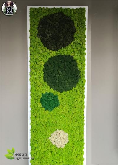 QUADRO RONDO' SQUARE GREEN™ Misure: 40x140 Colore Verde