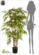 Bamboo BG Tree Altezze Varie