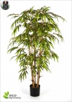 Bamboo BG Tree Altezze Varie