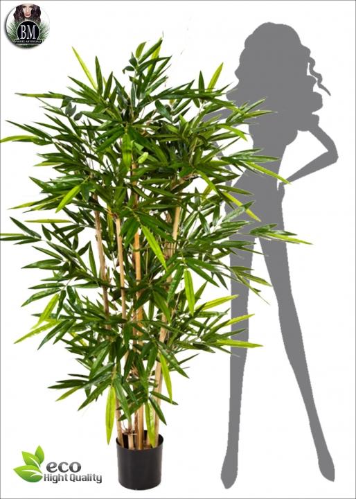 Bamboo Fitto BG tre Altezze