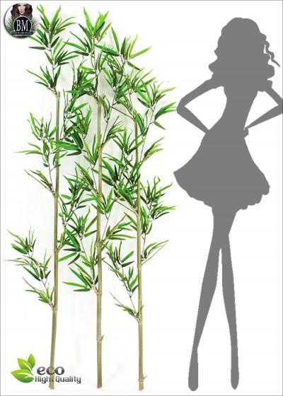 Bamboo UVR Canne Sfuse KIT da 3 - Varie Altezze