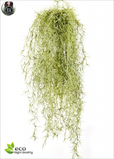 Long Hair Bush VERDE CHIARO 80cm