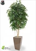 ROYAL LONGIFOLIA TREE DELUXE h 250  ø100cm