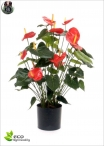 Anthurium Artificiale Delux H.80cm Rosso