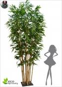 Bamboo Deluxe MAXI Bosco in piastra H.400cm