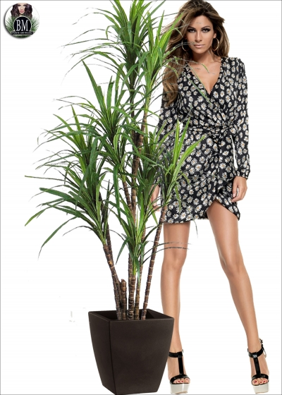 Edged dracaena Artificial H. 170cm and two Colors