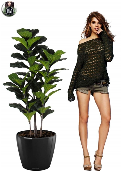Artificial Ficus Panda H. 133