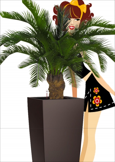 The Cycas Artificial Palm Tree EXT EXT H. 80