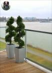 Boxwood Plant Spiral EXT H.150cm