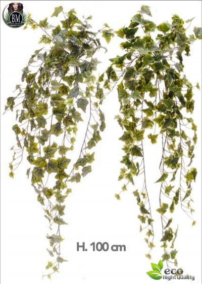 IVY FALLING LEAVES 244 X L. 100 CM, GREEN or VARIEGATED