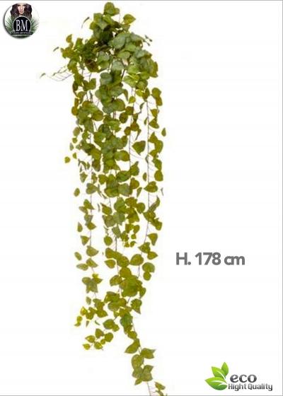 POTHOS BOUQUET 178 CM 423-GREEN LEAVES
