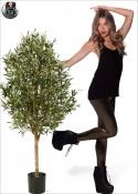 Olivo Artificiale Naturale tree due Misure