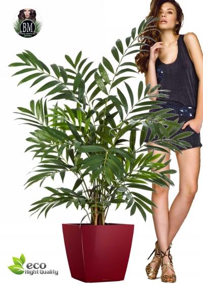 Artificial Parlour Palm H. 110 cm
