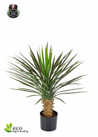 Yucca Artificial Nosed Head H. 80 cm