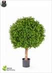 Boxwood Plant 2 Balls Diam. 50 and 40 H.120cm