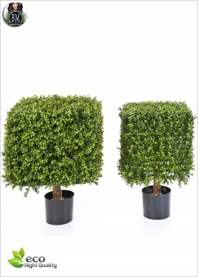 Boxwood Square On Frame Resistant Artificial outdoor 2 dimensions