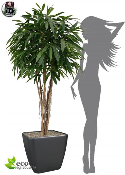 Artificial longifolia ROYAL TREE DELUXE h 180 ø90cm