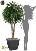 Longifolia Artificiale ROYAL TREE DELUXE h 180 ø90cm