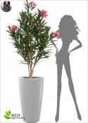 Oleander Artificial U. V. Resistance External LUX H. 150 cm