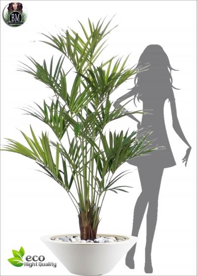Artificial Kentia Lux Large H. 190cm