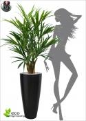 Artificial Kentia Palm Large Lux H. 140cm