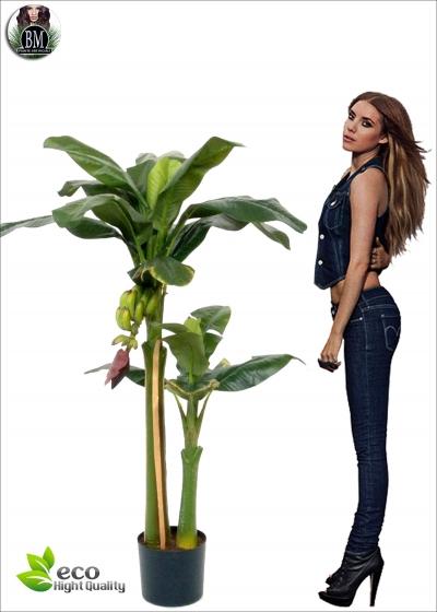 Banano New Artificiale con Frutto  H. 145cm
