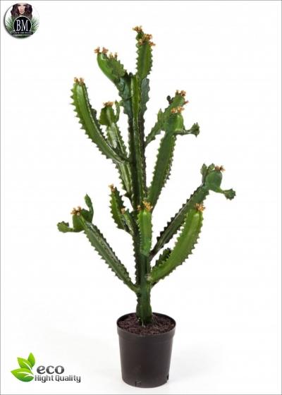 Cactus Artificiale euphorbia LUX H. 70 cm