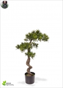 Podocarpus Bonsai Artificiale Delux H. 85cm