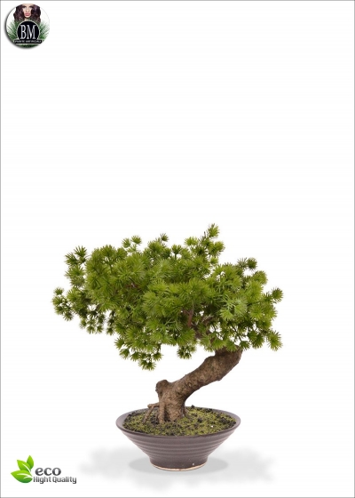 Pino Bonsai Artificiale In vaso 40cm