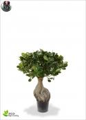 Panda Bonsai Artificiale In vaso 55cm