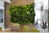 Paintings by Artificial Vertical Garden